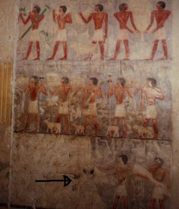 Archéologie Ptah-Hoptep Gris1
